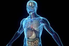 ما المشاكل الصحية التي تخبرك بها سوائل الجسم؟
