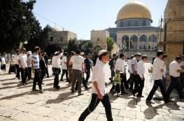 مستوطنون يؤدون طقوسا دينية في المسجد الأقصى