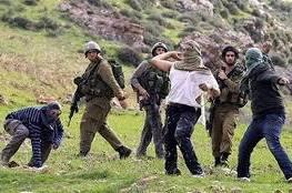 مستوطنون يرشقون الحجارة باتجاه سيارات المواطنين غرب بيت لحم