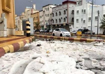 شاهد ..موجة حر تجتاح العالم بينما أمطار وثلوج في السعودية!