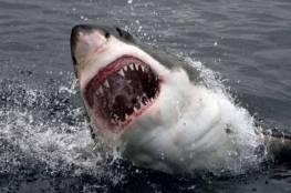 وفاة امرأة في هجوم محتمل لسمكة قرش بولاية مين الأمريكية