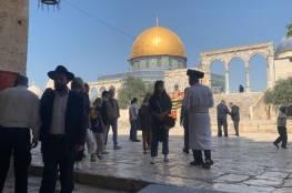 75 مستوطنا يقتحمون المسجد الأقصى