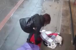 فيديو.. فتاة تغطي كلبا بوشاحها لتحميه من البرد