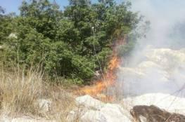 حريق كبير قرب الحدود الإسرائيلية اللبنانية