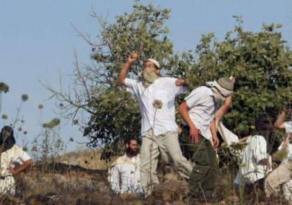 مستوطنون يشنون هجومًا جديدًا على قرية جالود جنوب نابلس