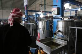 الزراعة بغزة: لن نسمح باستيراد زيت الزيتون لحين انتهاء المنتج المحلي
