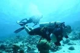 فيديو : العاهل الأردني وولي عهده يغطسان لتنظيف مياه العقبة