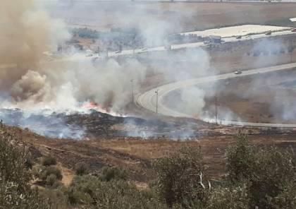 المستوطنون يضرمون النار بأراضي المواطنين في عوريف
