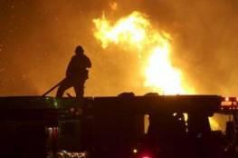 مستوطنون يحرقون عشرات أشجار الزيتون في بورين جنوب نابلس