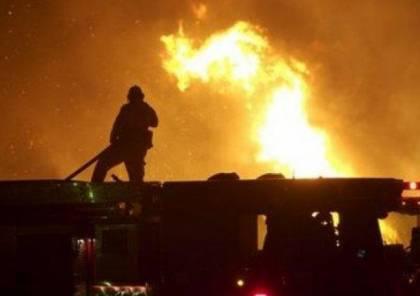 احتراق 104 أشجار زيتون في 7 حرائق متفرقة في جنين