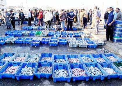وزارة الاقتصاد بغزة تصدر قائمة باسعار الاسماك التي تباع بالاسواق