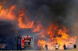 حريق بفعل بالون حارق في غلاف غزة