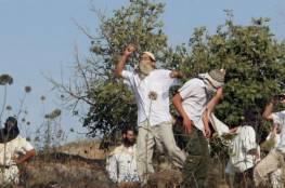 مستوطنون يهاجمون خان اللبن الشرقية