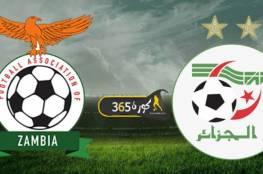 بث مباشر : مشاهدة مباراة الجزائر وزامبيا بتصفيات كأس أمم إفريقيا