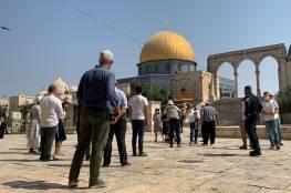 """مستوطنون يقتحمون """"المسجد الأقصى"""""""