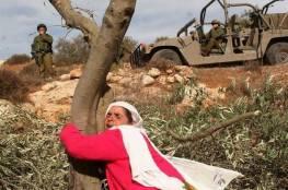 سابقة.. دولة عربية تخرج عن الاجماع العربي..ولا تصوّت لصالح بند يدين الانتهاكات الإسرائيلية في فلسطين
