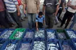 نقابة الصيادين توضح حالة الصيد وأسعار السمك لهذا اليوم
