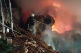 حريق بمزرعة ابقار في عصيرة القبلية