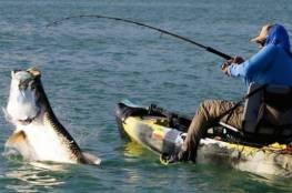 علاقة محبة بين صياد سمك وبجعة... فيديو