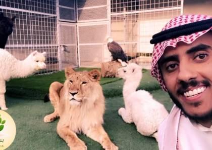 حقيقة وفاة أسامة الدغيري بعد خبر أسد يقتل شاب في السعودية