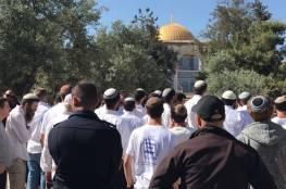"""148 مستوطنا يقتحمون """"المسجد الأقصى"""""""