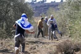 تقرير: مواجهات ساخنة بين المزارعين والمستوطنين خلال موسم قطف الزيتون