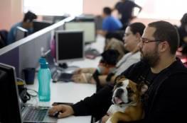 هكذا يراقب المديرون موظفيهم العاملين عن بعد