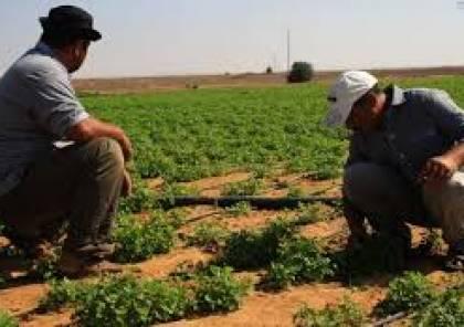 صرف دفعة مالية لـ88 مزارعا في قطاع غزة