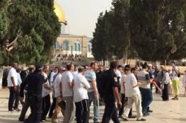 """مستوطنون يدعون لاقتحامات مكثّفة لـ""""الأقصى"""" غداً بالتزامن مع الانتخابات الإسرائيلية"""