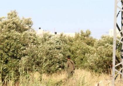 قوات الاحتلال تطبق اجراءات مشددة بحق المواطنين في محيط تقوع