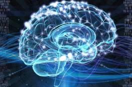 أغذية ضرورية لصحة و نشاط الدماغ