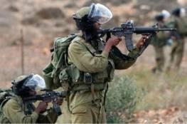 الاحتلال يزعم: احبطنا عملية تهريب اسلحة من الاردن