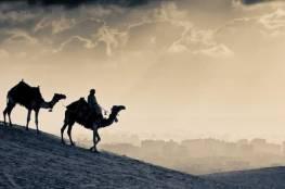 شيء يوجد في أجساد العرب ولا يوجد لدى الغرب.. ما سبب مقاومة العرب لفيروس كورونا؟