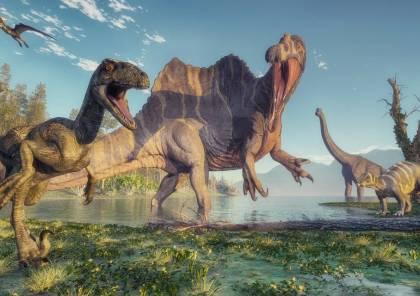 فيديو : اكتشاف واحدة من أكبر فصائل الديناصورات في العالم
