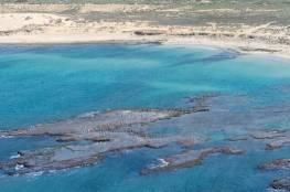 الكشف عن ناقلة النفط التي تسببت بتلوث شواطئ إسرائيل