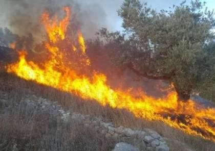 محافظ سلفيت: السيطرة على النيران والحريق الذي اندلع ظهر اليوم بمصنع البلاستيك