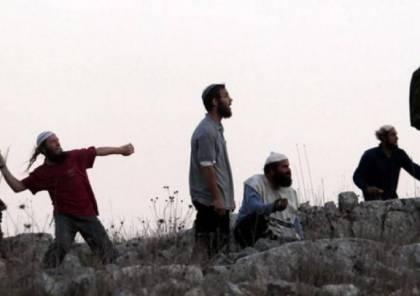 مستوطنون يعتدون على مزارعين غربي بيت لحم