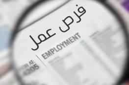 (مرفق رابط التسجيل) 3600 فرصة عمل مؤقتة خلال الأسابيع المقبلة في غزة