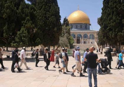 """عشرات المستوطنين يؤدون شعائر تلمودية جماعية بـ""""الأقصى"""" تحت حماية قوات الاحتلال"""
