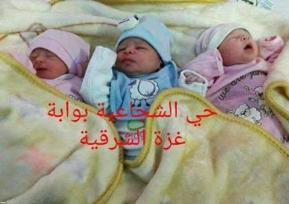 """""""قدس"""" و""""عاصمة"""" و""""فلسطين"""".. أسماء أطلقها أب من غزة على 3 توائم"""