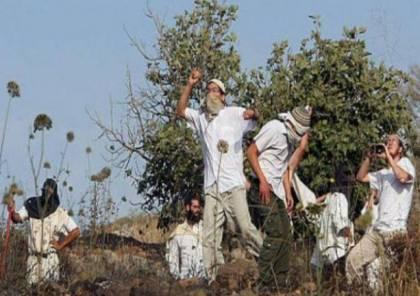 إصابة مواطن وتضرر ثلاث مركبات إثر اعتداء للمستوطنين شرق رام الله