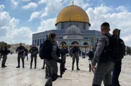الاحتلال يهاجم شبانا مقدسيين ويعتدي عليهم بالضرب قرب باب العامود