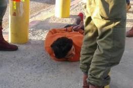 صور: إعتقال فتاة قرب نابلس بزعم محاولتها تنفيذ عملية طعن