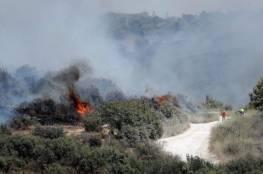 صحيفة إسرائيلية: كيف وصلت حرائق الغابات في مدينة القدس إلى بن غوريون في قبره؟