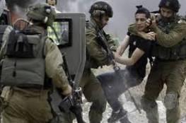 """الاحتلال يعتقل شابا من """"العيسوية"""""""