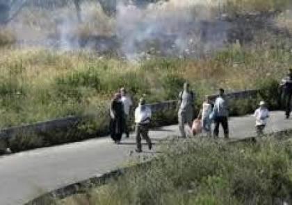 مستوطنون يغلقون طريق جنين نابلس ويهاجمون المركبات