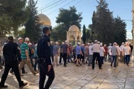 """84 مستوطنا يقتحمون """"المسجد الأقصى"""""""