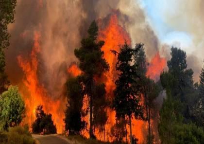 اندلاع حريقين كبيرين غرب مدينة القدس
