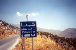"""""""إسرائيل"""" تخطف 100 رأس ماعز من مزارع شبعا اللبنانية"""
