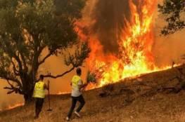 يديعوت: جبال القدس تشتعل مجدداً
